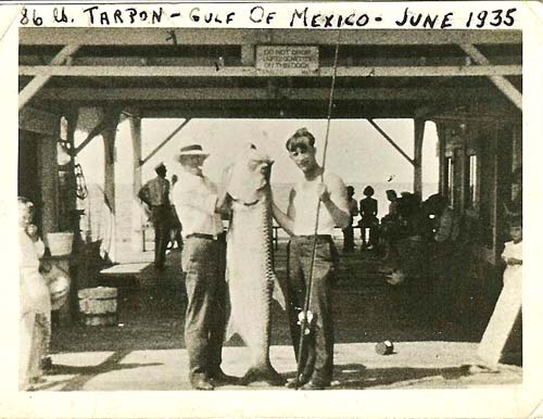 86 lb tarpon June 1935