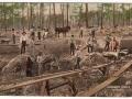 Florida - Phosphate Mining